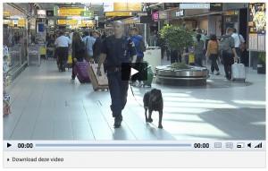 Vergroot afbeelding: Video met knop voor ondertiteling en audiodescriptie en een knop om de video te downloaden