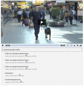 Vergroot afbeelding: Dezelfde video met de verschilende bestandsformaten die je kan downloaden in beeld (zie ook tekst hierna)